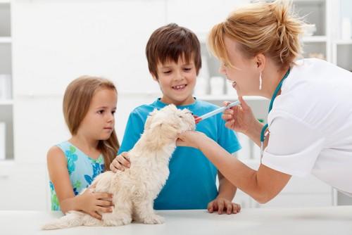 Vaccinations  Estero, FL